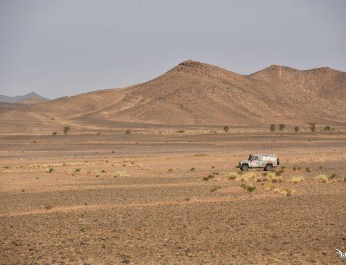 Rallye des Gazelles – Stage 5 – Marathon Day 2