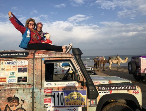 Gazelles 2019 – The Finish in Essaouira